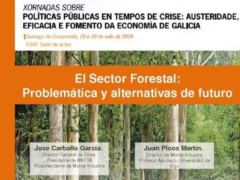 Juan Picos Martín - Xornadas sobre Políticas Públicas en tempos de crise: austeridade, eficacia e fomento da economía de Galicia